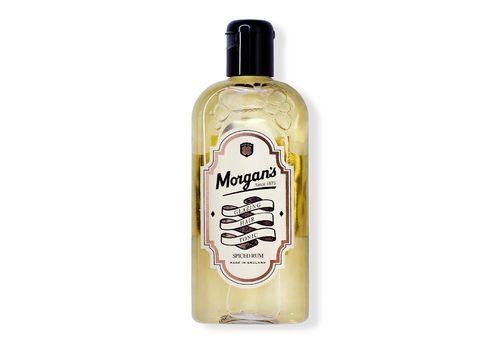 MORGAN'S Glazing Hair Tonic - Глазирующий тоник для волос, 250 мл, фото 1